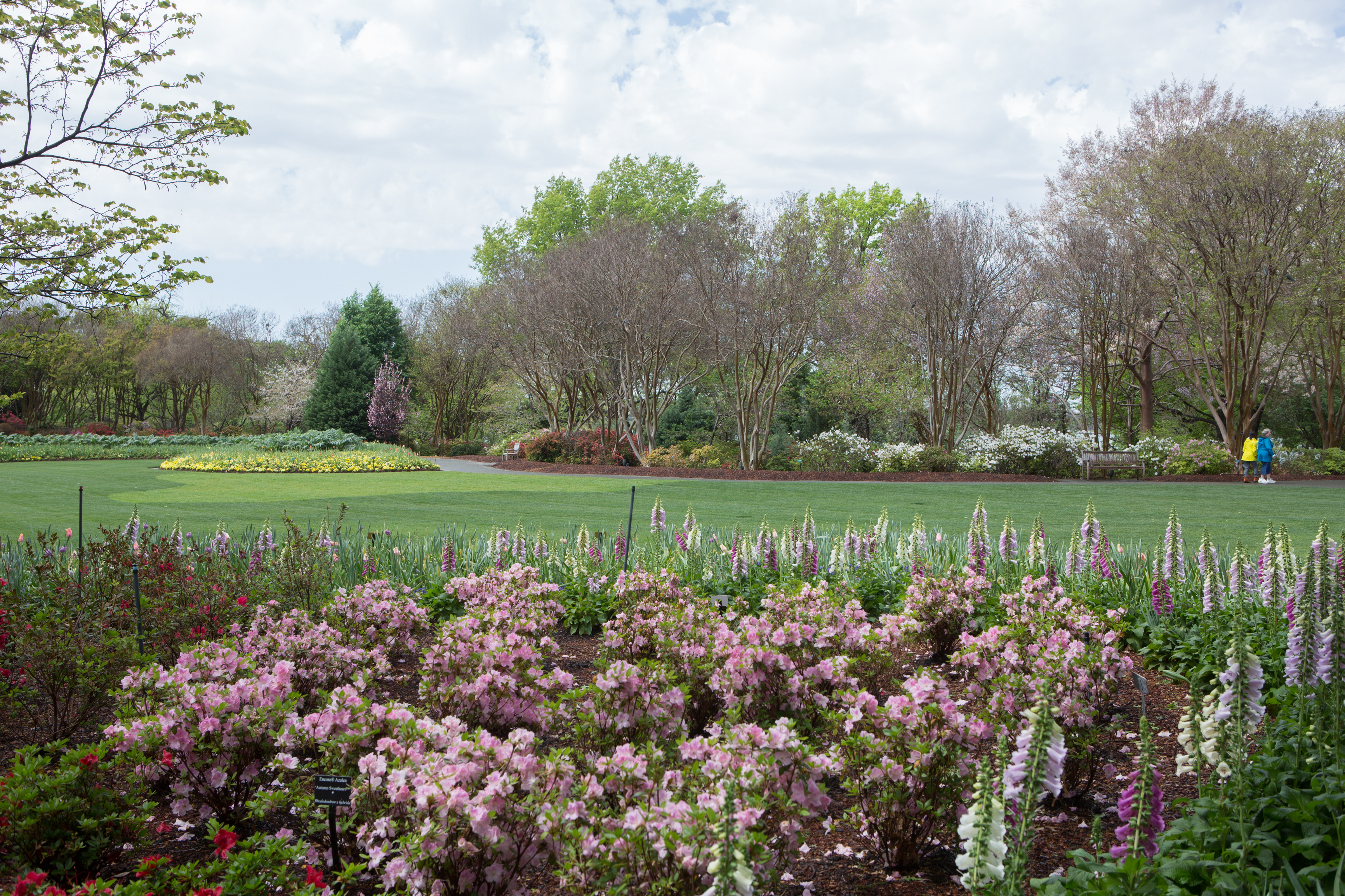 Soak Up Spring At The Dallas Arboretum And Botanical Garden